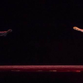 Citie-Ballet---Nov-1-2015-24