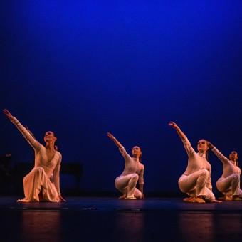 Citie-Ballet---Nov-1-2015-67